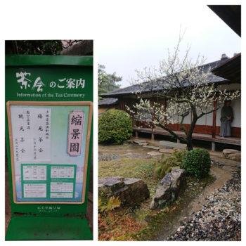 広島市 中区 着付け教室